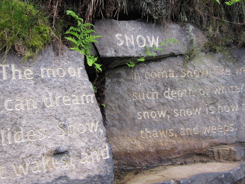 Image result for simon armitage stanza stone